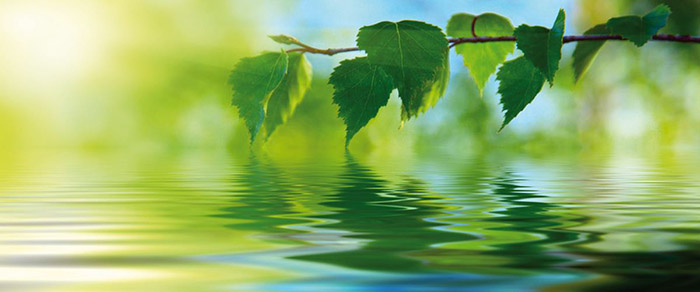 ambienta-mirisi2