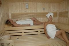 sauna-saune-finske-bio-saune-slika-32594358