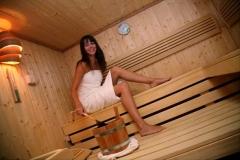sauna-saune-finske-bio-saune-slika-5307266